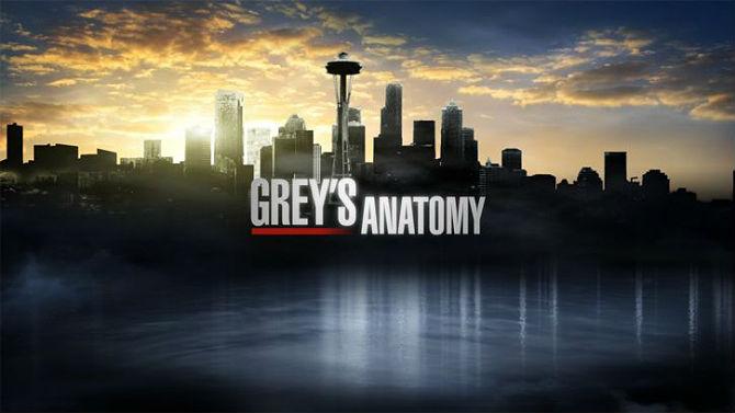 Resultado de imagem para sobre Greys Anatomy