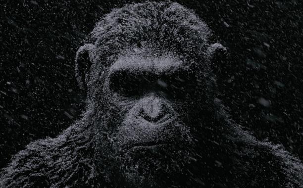 Fox libera primeiro trailer de 'Planeta dos Macacos: A Guerra'