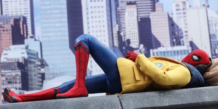 4-spider-696x348.jpg