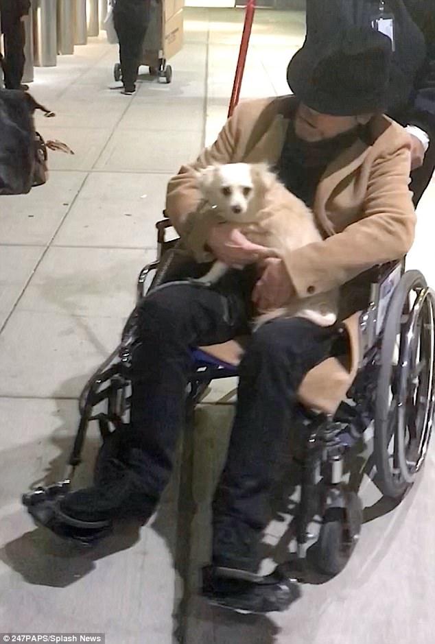 Mark Hamill apareceu em uma cadeira de rodas, aparentemente debilitado.