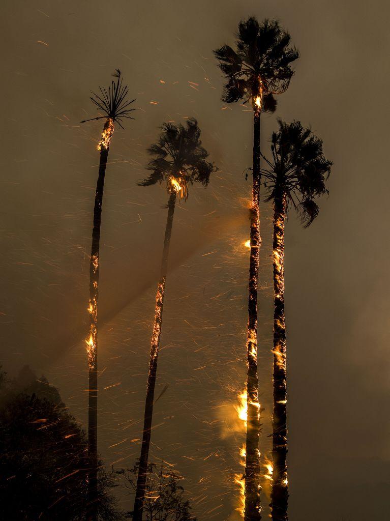 Thomas fire burns in Ventura County, California, Ojai, USA - 05 Dec 2017