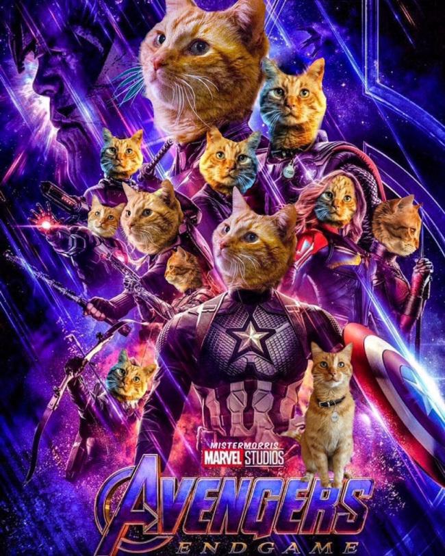 avengers-endgame-cat-all-goose-poster_marvel-twitter.jpg