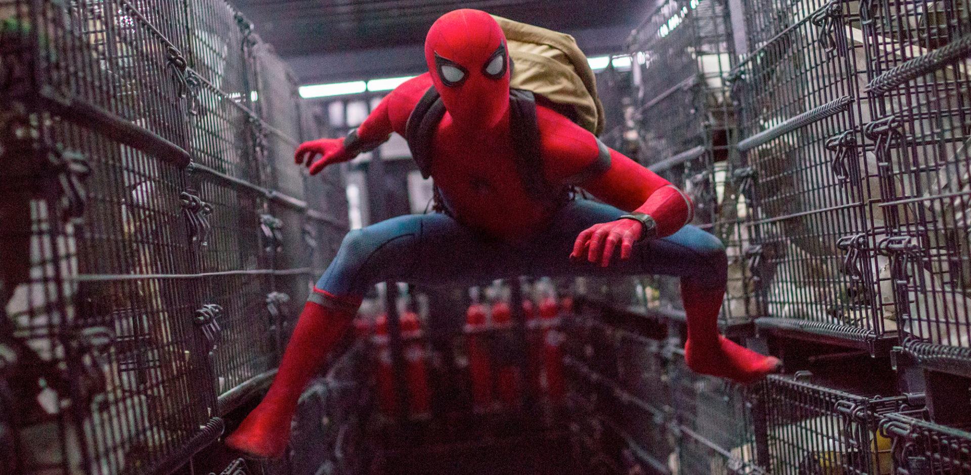 Resultado de imagem para Homem-Aranha: atriz de Descendentes quer ser a nova Gwen Stacy