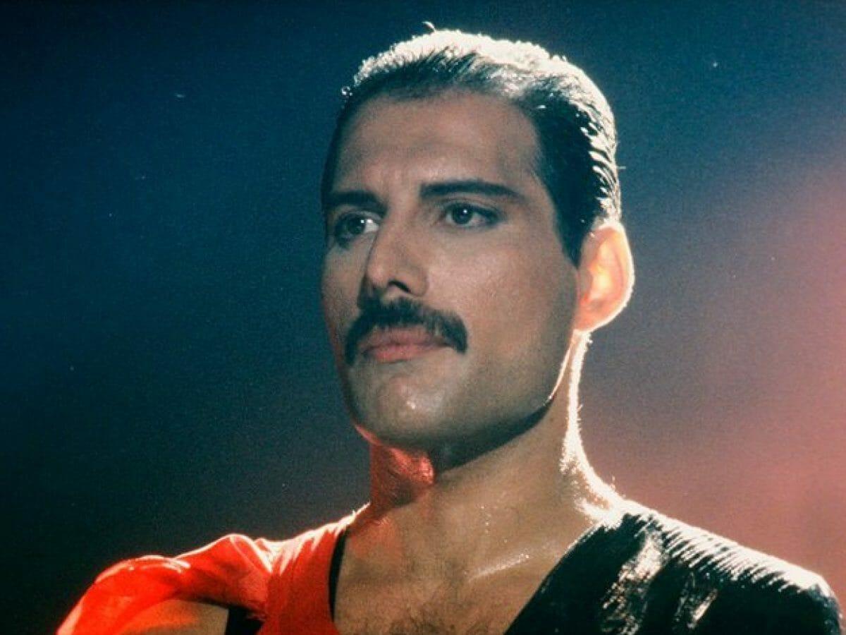 Alma de Freddie Mercury foi para gato dele, diz amiga
